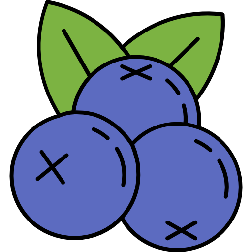 003-blueberries